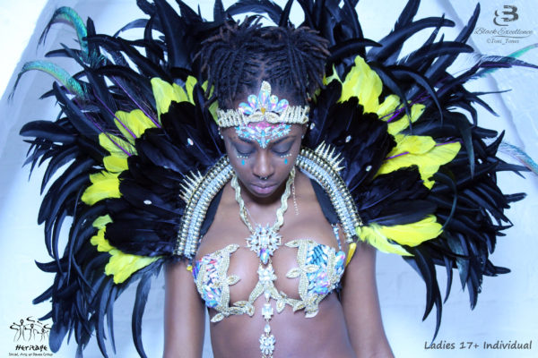 Ladies 17+ Premium Carnival Costume